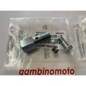 BULLONE + RACCORDO POMPA iniezione motore LOMBARDINI 6LD360-400-6LD435