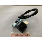 CENTRALINA ELETRONICA MOTORE CM25-CM46-CM80-CM-90-CM115 R511-A1118 SELETTRA